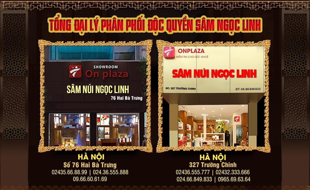 Cửa hàng phân phối độc quyền sâm ngọc linh Kon Tum