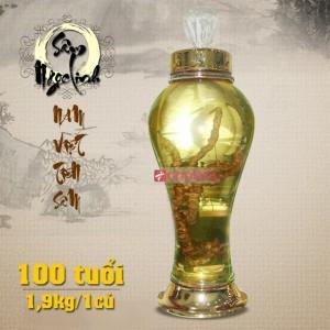 Bình rượu sâm ngọc linh 45 năm tuổi loại 2,1kg 1 củ sâm