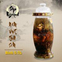 Bình rượu Sâm Ngọc Linh KG13