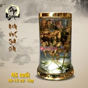 Bình sâm ngọc linh ngâm 45 năm tuổi loại 1kg 10-13 củ