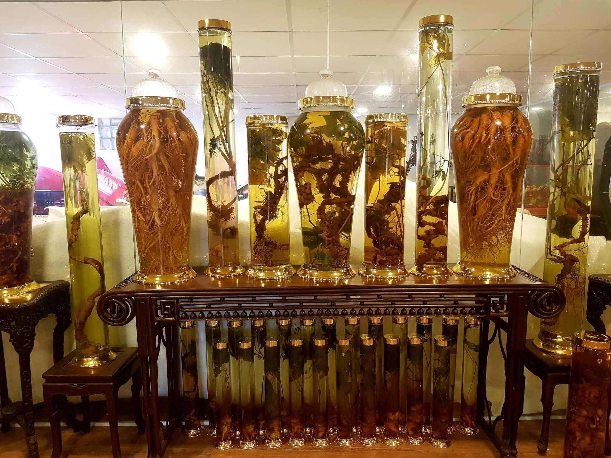 Kho rượu sâm ngọc linh tại Onplaza